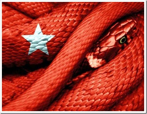 serpente-e1266030329961